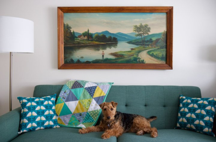 dog on a green couch and painting above