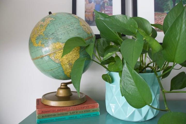 vintage globe on books and plant