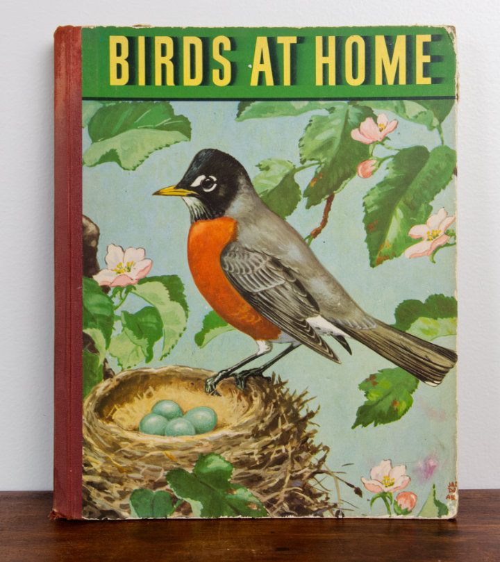 A large book, Birds at Home with a picture of a robin and a nest illustrated on the front