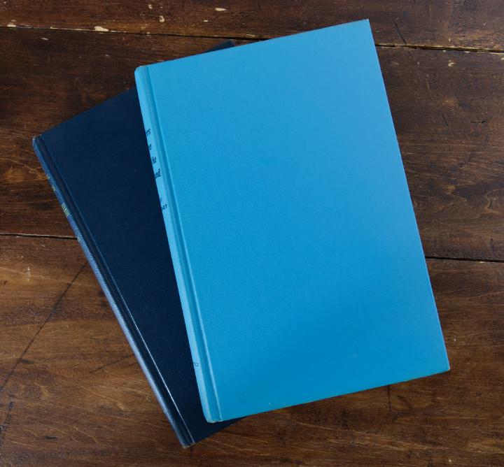 The Mary Stewart books have had their dust jackets removed leaving them non-descript blue books