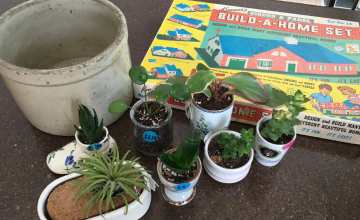 A small old crock, a toy set to build a house, and propagated baby plants in small containers sit on a counter, proceeds for charity - vintage shopping for a cause
