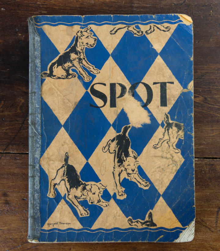 A small paperback school reading primer called Spot with an Airedale puppy and a blue diamond design on the cover which is tattered