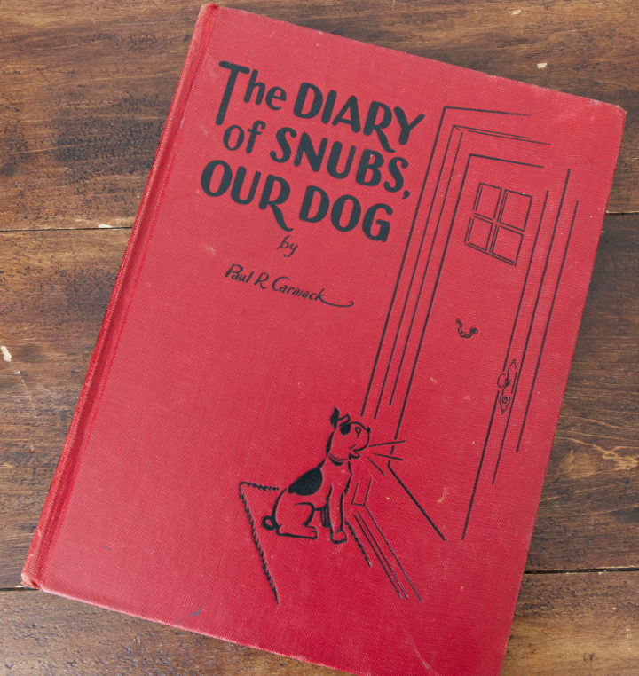 Red hardcover, vintage book, The Diary of Snubs, Our Dog with dog drawing on the front - a summer vintage find
